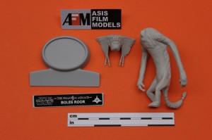 BOLES ROOR-ASISFILMMODELS-FDEASIS73